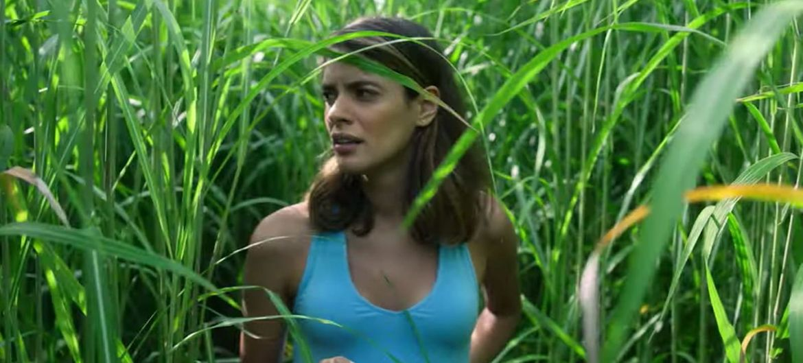 Movie Review: In the Tall Grass (2019)